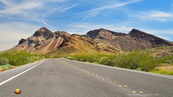 Happy on the Road, Nevada Desert near Las Vegas