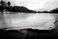 Under the Fresh Ice on Green Lake, Yates Park, Orchard Park, NY