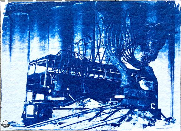 Buffalo, NY Cyanotype, Exposed and washed