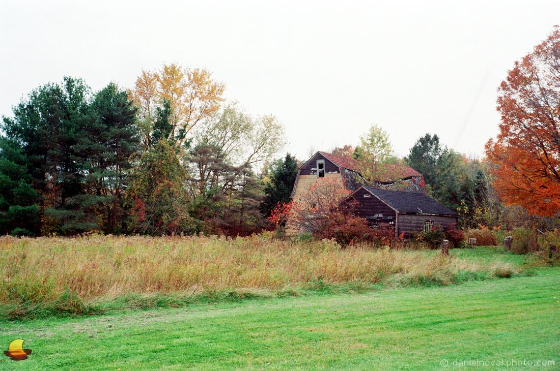 Three Barns' Last Fall, October 2019, Zeiss Ikon Contessa, Kodak Gold 200