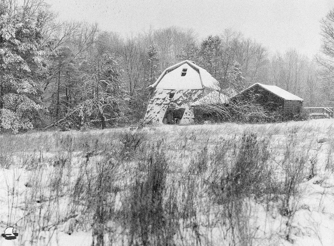 Last Winter for the Three Barns, February 2020, Mamiya 645, Foma Retropan 320