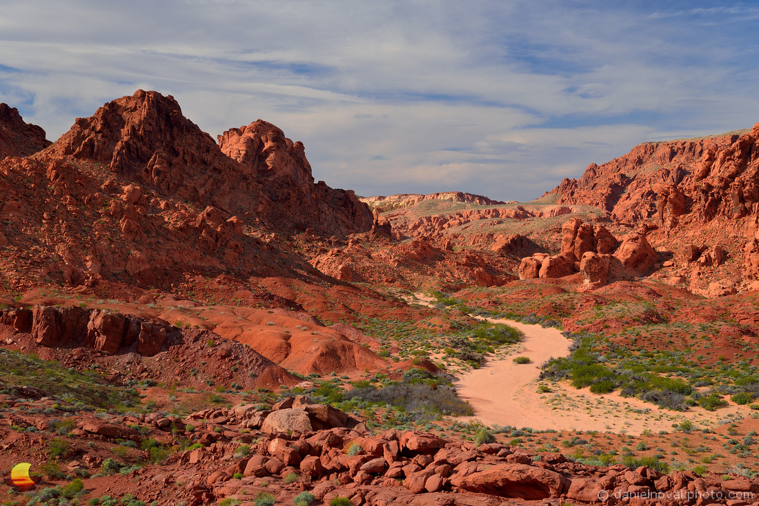 Desert Trail, Valley of Fire State Park, Mojave Desert, Nevada