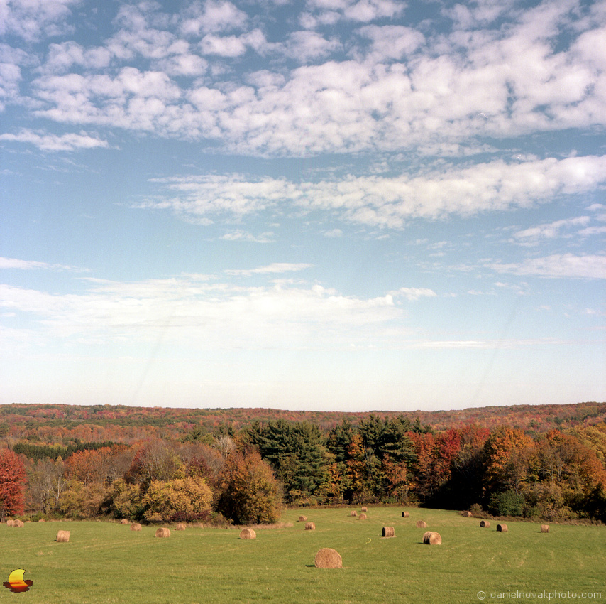 Hay Bales by Mill Road, Fall in Western New York, Photographed with Rolleiflex Automat on Kodak Portra 160 color negative film