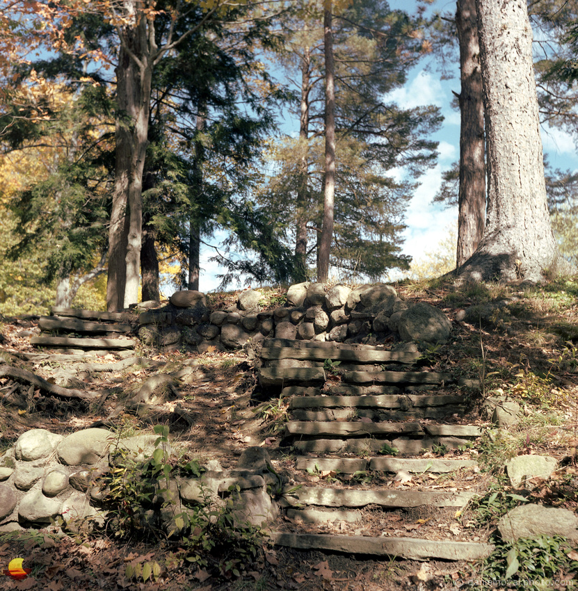 Stairs at Emery Park, Fall in Western New York, Photographed with Rolleiflex Automat on Kodak Portra 160 color negative film