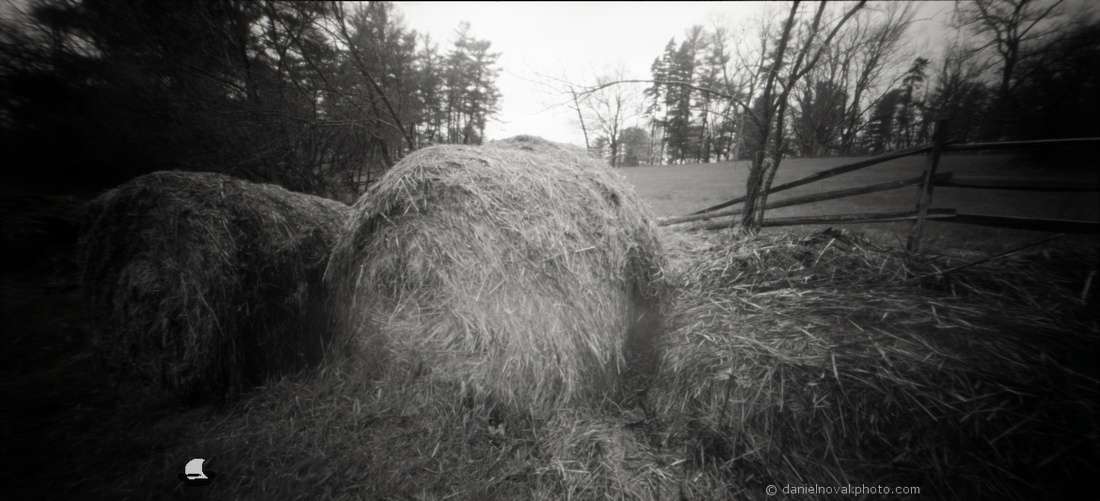 Hay Bales - WPPD 2020