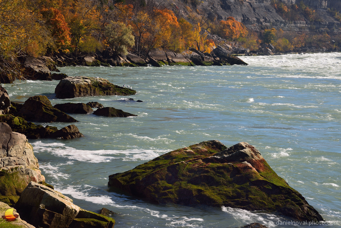 Fall around Lower Niagara River, Whirlpool State Park, Niagara Falls, New York (NY)