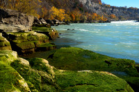 Mossy Niagara River Banks at Whirlpool State Park, Niagara Falls, New York (NY)