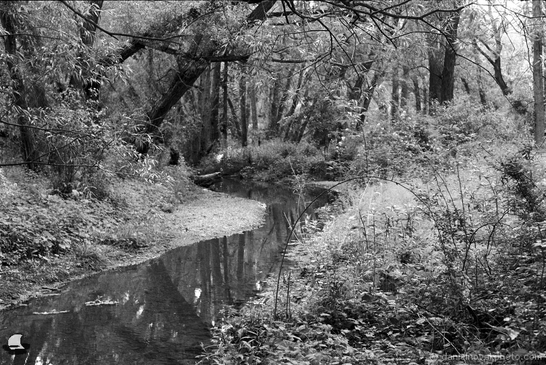 Birdsong Creek with a Pentax K1000 on Kodak Double-X 5222, Orchard Park, NY