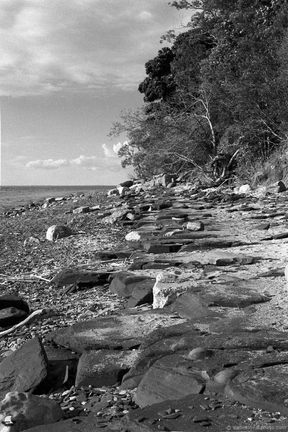 Rocky Beach, Sturgeon Point on Double-X for the Partnership of the Passing Pentax K1000
