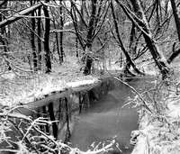Winter Creek in Birdsong Park Covered in Ice and Snow, Orchard Park, New York (NY)