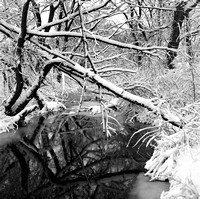Snowy Birdsong Gate in Winter with a Reflection in the Creek, Birdsong Park, Orchard Park, New York (NY)