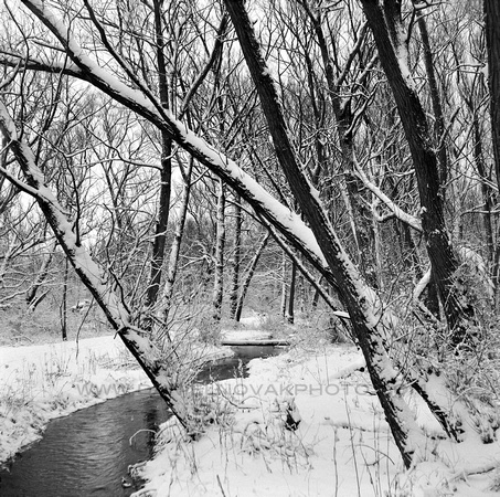 Through the Winter Landscape, Creek in Birdsong Park, Orchard Park, New York (NY)