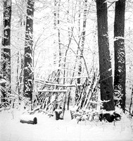 Snow Covered Winter Camp Shelter, Orchard Park, New York