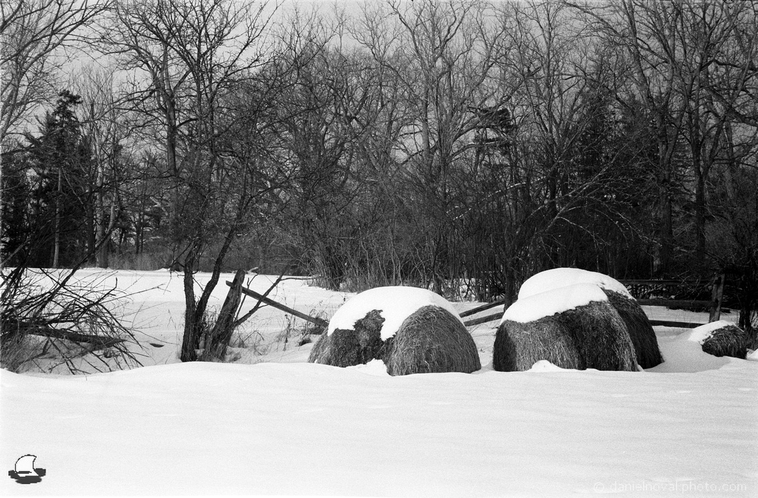 Hay Bales in Snow, Knox Farm, East Aurora, NY