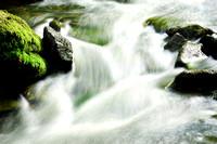 Murder Creek Flow, Mossy Rocks, Akron Falls Park near Buffalo, NY
