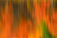 Fall Abstract Reflection at Moss Lake, Autumn Nature in Western New York