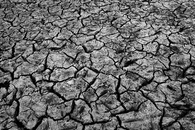 Land soil cracks in Buffalo, New York (NY) showing how dry the summer 2012 was.