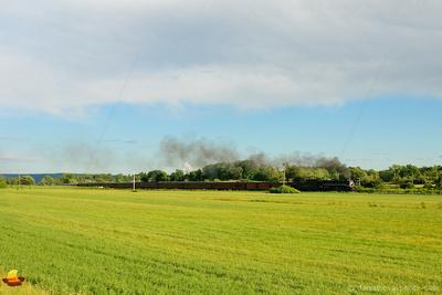 No. 765 Steam Locomotive in Rural Landscape, Open Field by Attica, NY