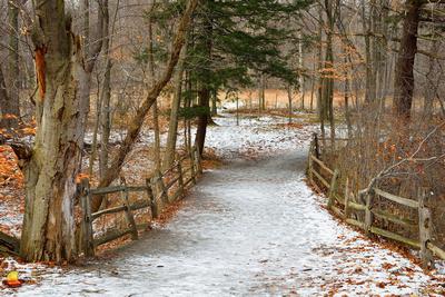 Bridge Head On, Knox Farm State Park, East Aurora, NY