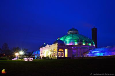 Lumagination of Buffalo Botanical Gardens, Buffalo, NY