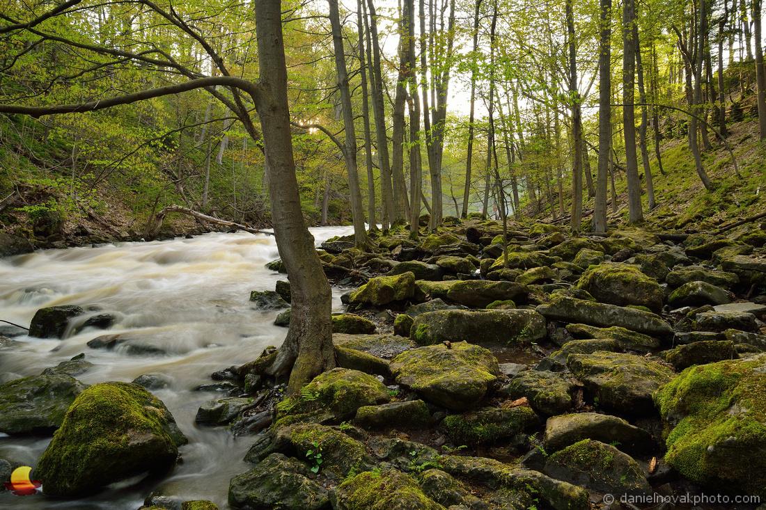 Murder Creek Greens, Akron Falls County Park near Buffalo, NY
