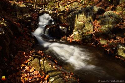 Waterfall in Fall, Rose River Falls Trail, Shenandoah National Park, Virginia