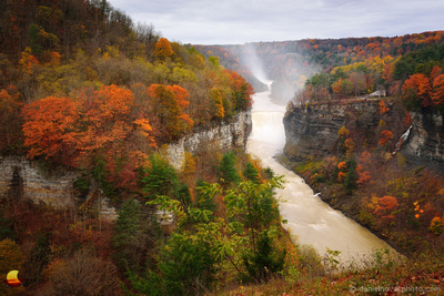 Colorful Fall Morning Inspiration, Middle & Upper Falls, Letchworth State Park