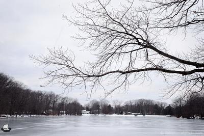Over Frozen Green Lake, Yates Park, Orchard Park, NY