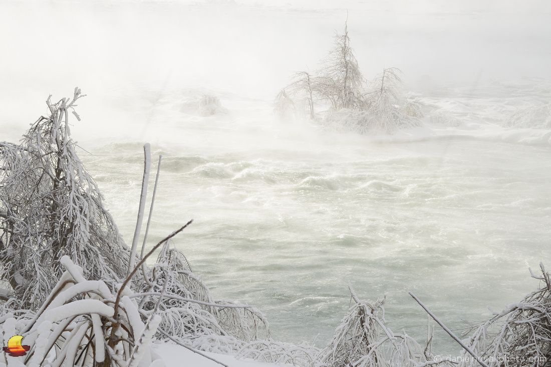 Brave Trees, Upper Niagara River Rapids, Niagara Falls in Winter