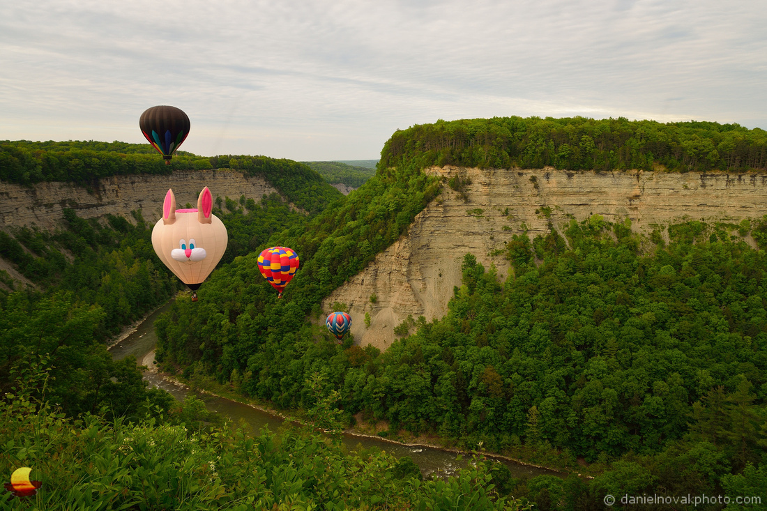 Fred B Rabbit over Letchworth State Park, 17th Annual Red, White, and Blue Balloon Festival 2018