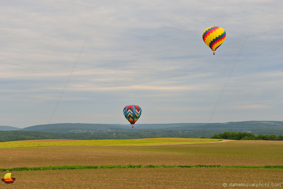 Searching for a Landing Spot, 17th Annual Red, White, and Blue Balloon Festival 2018