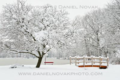 Green Lake and Yates Park in Snow, Orchard Park - Buffalo, New York, Twelve Months, Twenty Photos.