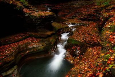 Fall / Autumn At Watkins Glen, Twelve Months, Twenty Photos.