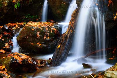 Water Veils in the Fall, Dark Hollow Falls Trail, Shenandoah National Park, Twelve Months, Twenty Photos.