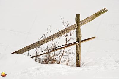 Fence in Snow, Knox Farm Winter Theme, East Aurora, New York (NY).