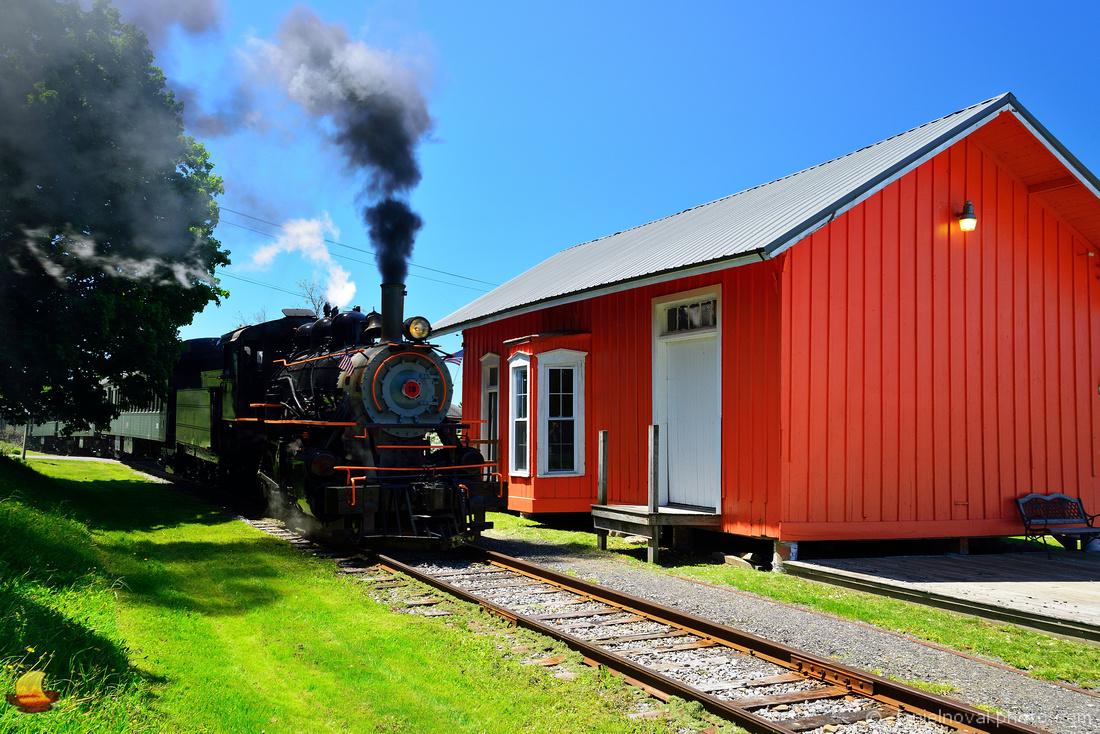 No. 18 Steam Locomotive Arriving in Curriers Depot, Arcade & Attica Railroad