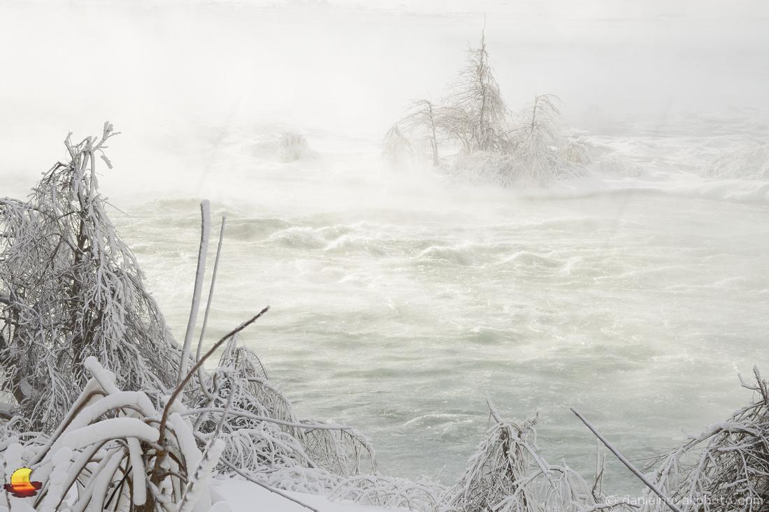 Brave Trees, Upper Niagara River Rapids, Niagara Falls in Winter