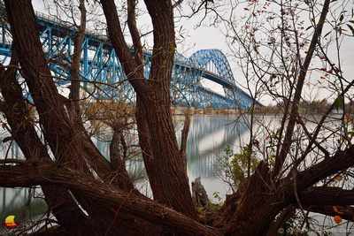 South Grand Island Bridge behind Trees, Buffalo, NY