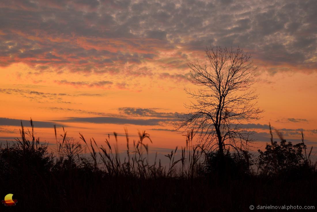 Saluting the Sunrise, North Dunes Nature Preserve, Lake Michigan, Zion - Chicago, IL