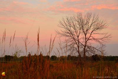 Western Glow of Sunrise, North Dunes Nature Preserve, Lake Michigan, Zion - Chicago, IL