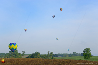 Ballons over a Field, 16th Annual Red, White, and Blue Balloon Festival in Letchworth State Park, 2017