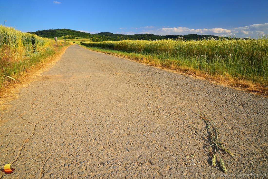 Road through Fields & Hills, Southern Moravia, Czech Republic