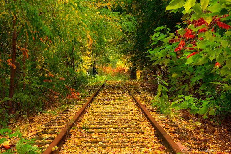 Daniel Novak Photo Orchard Park Train Depot In The Fall
