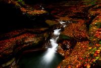 Fall At Watkins Glen, Autumn Colors